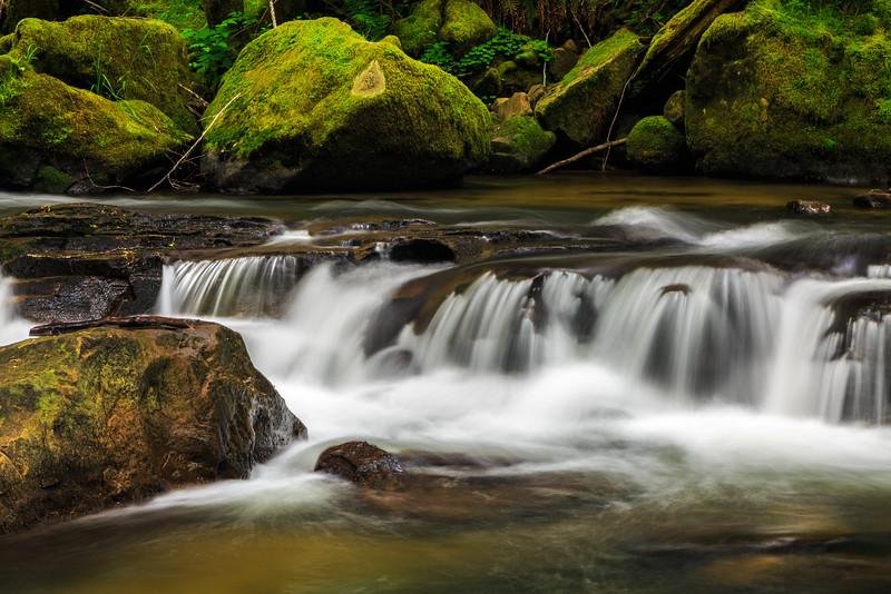 Rapids of Glenn Creek at Silver and Golden Falls Oregon