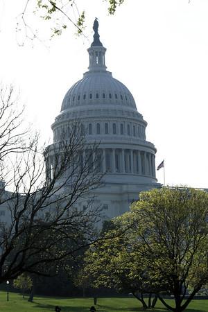 Spring 2010 - Washington DC