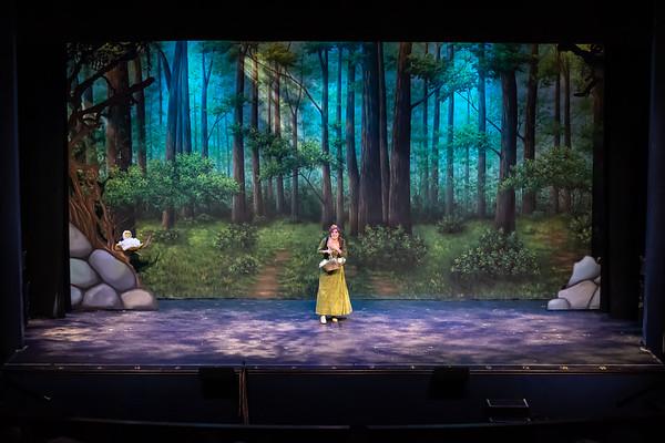 Shrek Act 2 Preview
