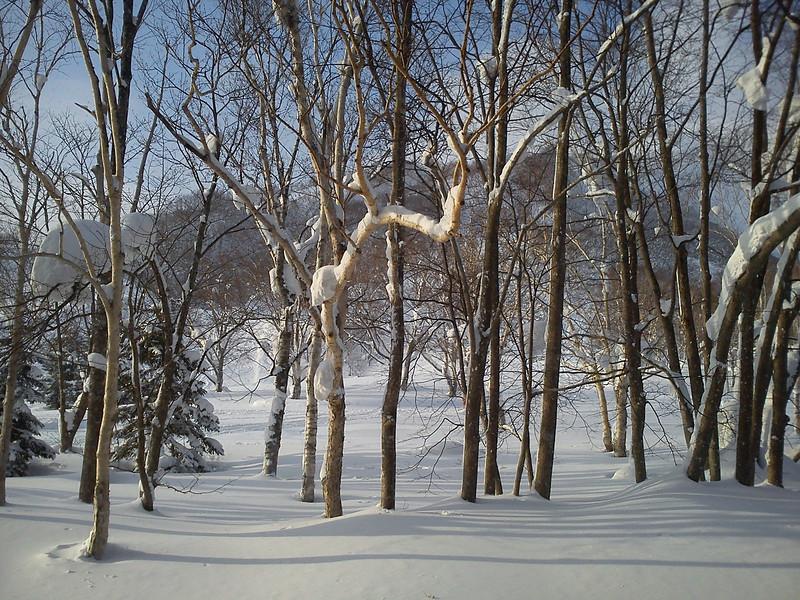 2012_02_17-16_43_10.jpg