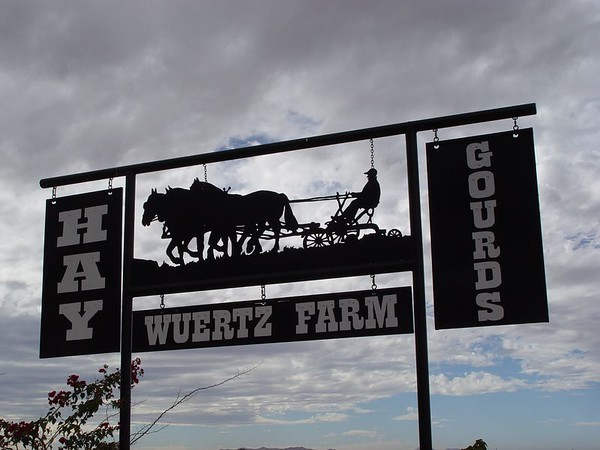 2004 Wuertz Farm - Gourds - Casa Grande, AZ