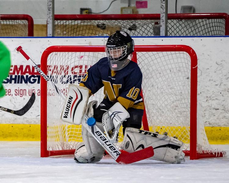 2019-02-03-Ryan-Naughton-Hockey-73.jpg