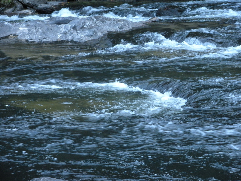 Example of an Eddy Chattooga River - Section III