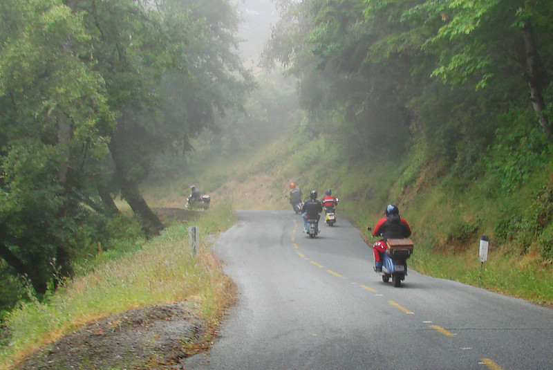 Fog & wetness on Alpine Rd