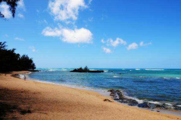 Oahu with the Fredricks