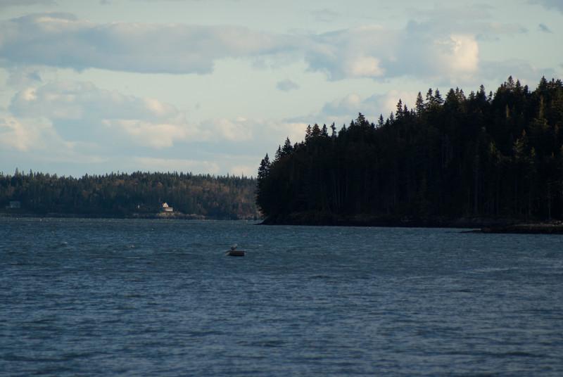 Maine Vacation-02899.jpg