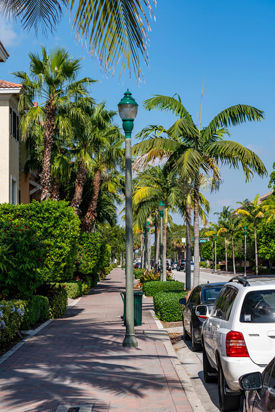 Spring City - Florida - 2019-249.jpg