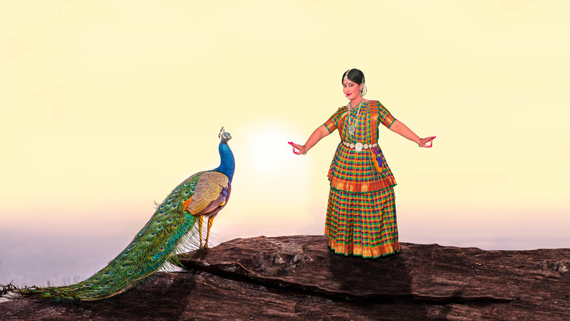 Kavya-Composite-Peacock Rev1.jpg