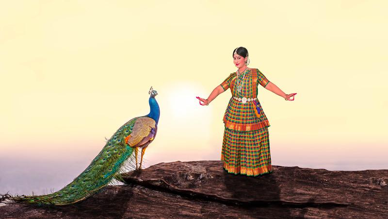 Kavya-Composite-Peacock Rev1.jpg