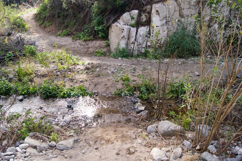 201201291694-El Prieto Trailwork.jpg