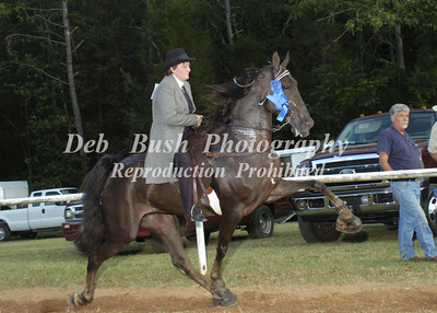 CLASS 18  AMATEUR 50 & OVER  SPECIALTY