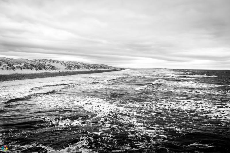 Coast-Mar19 (2 of 45).jpg
