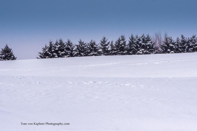 Tom von Kapherr Photography-7472.jpg