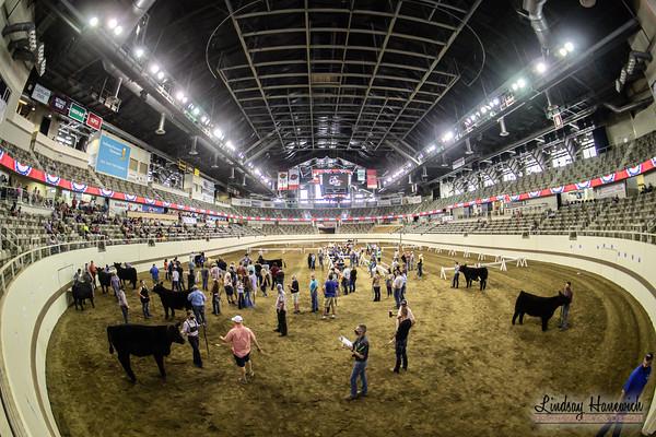 2020 Indiana State Fair