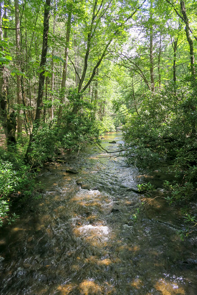 North Fork Mills River (Crossing #3) -- 2,270'