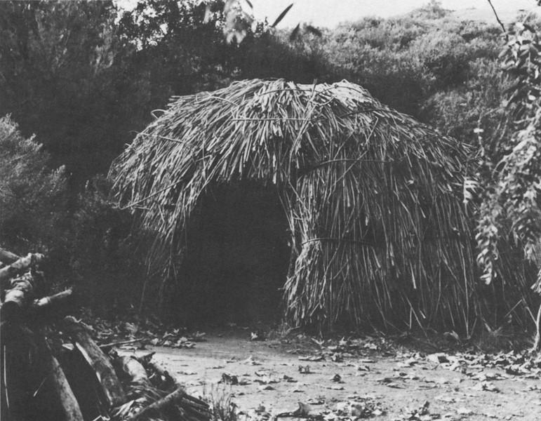 Chumash Hut