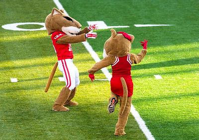 UH vs. Tulsa Football Game: Oct.15, 2016
