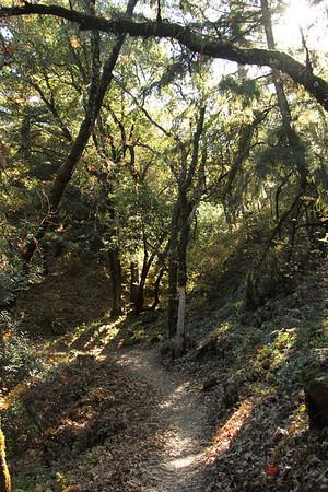 FOMFOK - Saratoga Gap Openspace