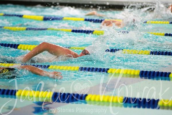PC Swimming 2017
