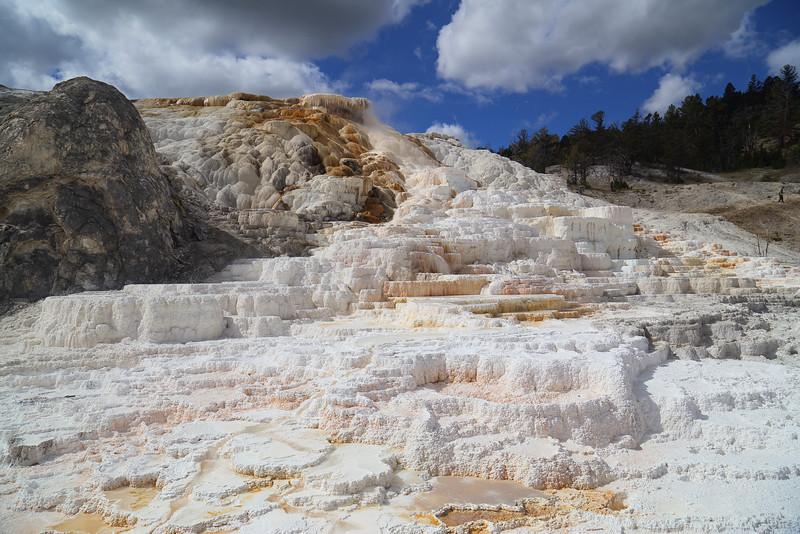 Yellowstone 118.JPG