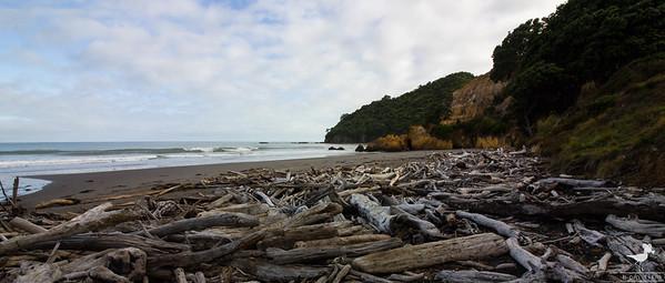 Morice's Beach