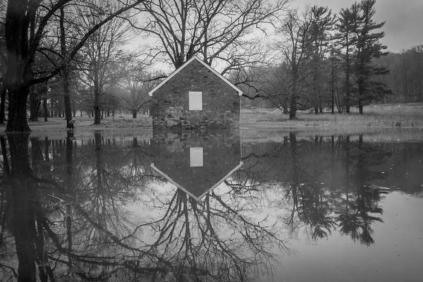 Puddles & Reflections