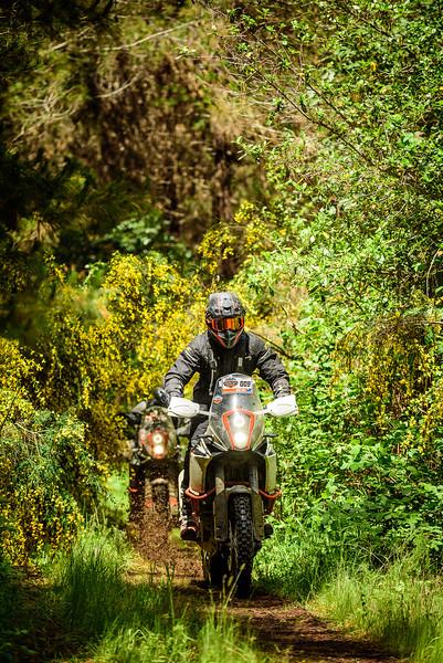 2019 KTM New Zealand Adventure Rallye (409).jpg
