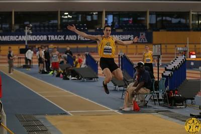 Heptathlon Long Jump