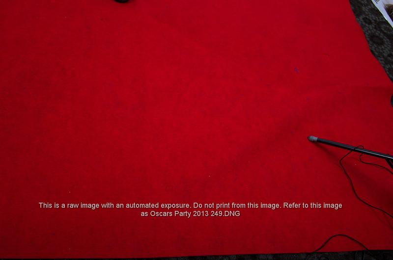Oscars Party 2013 249.JPG
