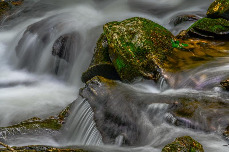 FRESH WATER   67