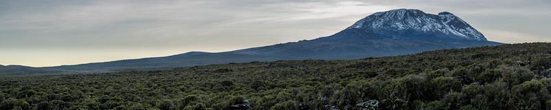 Kilimanjaro_Feb_2018-30.jpg