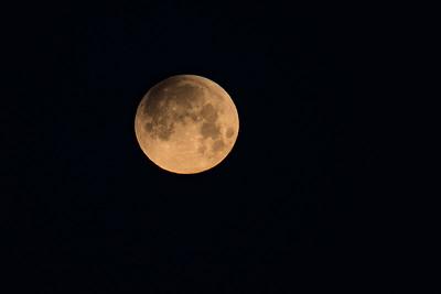 Lunar Eclipse 1.31.2018