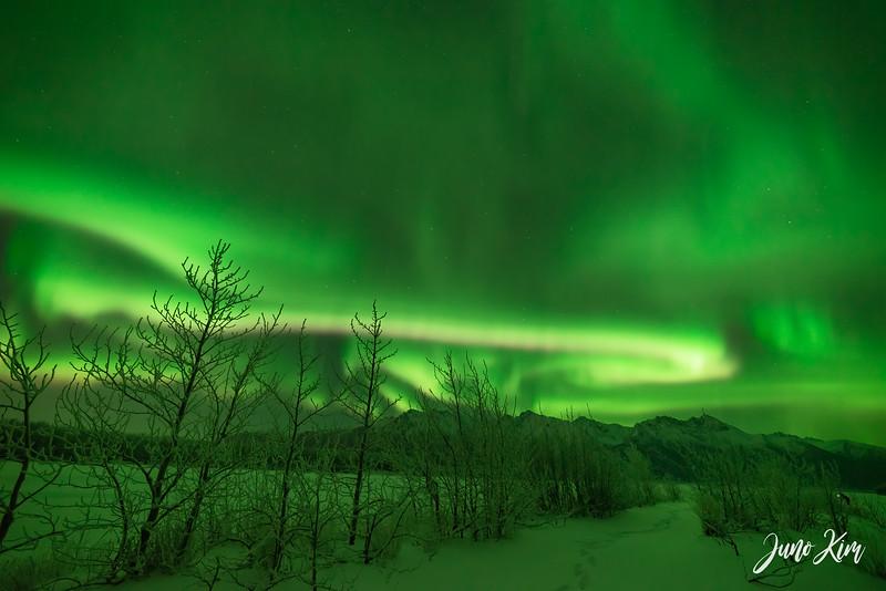 Nov20_Knik River Aurora__6105194-Edit-Juno Kim.jpg