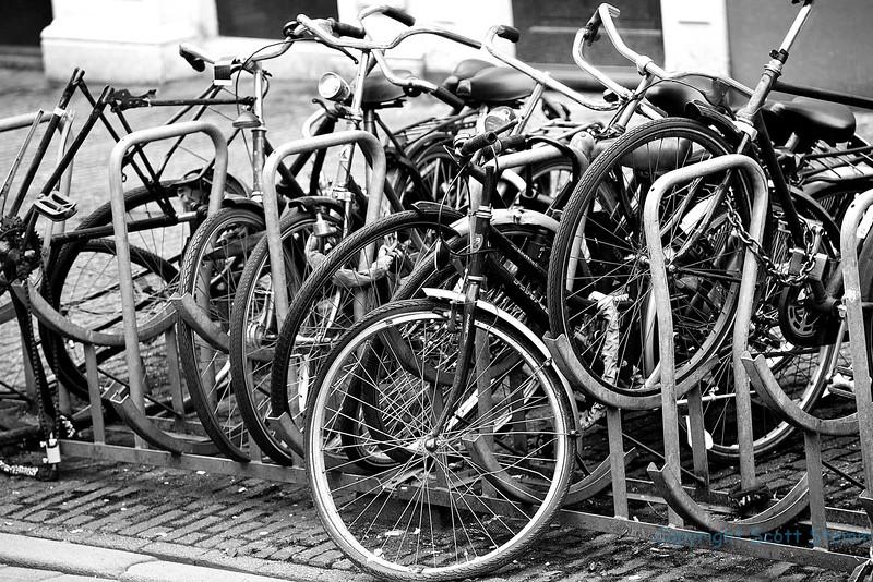 Bikes Amsterdam.jpg
