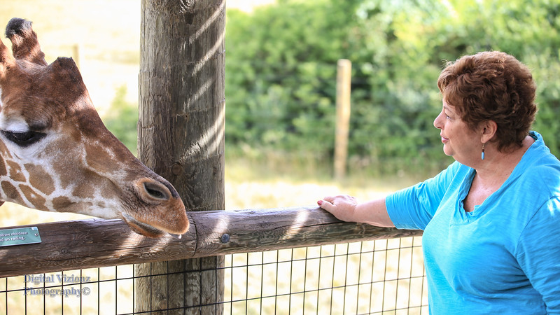 2016-07-17 Fort Wayne Zoo 273LR.jpg
