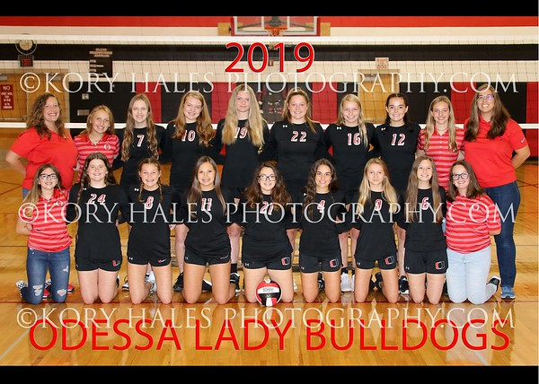 2019 OMS Volleyball