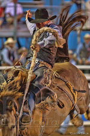 2014 Rodeo of the Ozarks