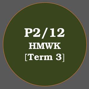 P2/12 HMWK T3