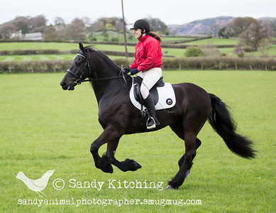 Friesian Experience Keira & Kerry Apr 2015