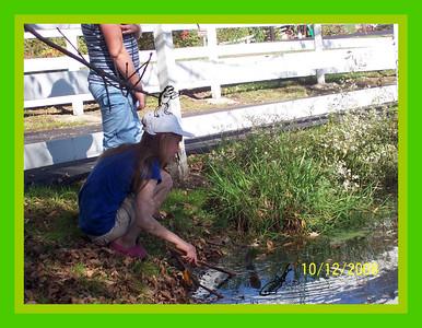 Celery Flats Portage
