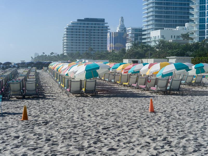 Miami DEC 2018-0005807.jpg