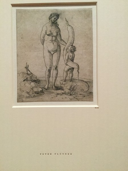 Womanhood: themes in depictions of women around 1500