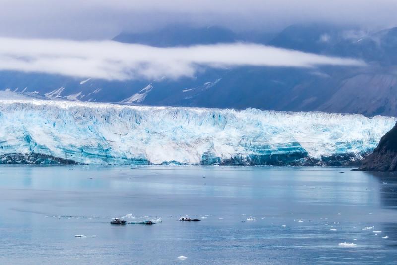 Alaska 2015 - Hubbard Glacier -  072415-039.jpg
