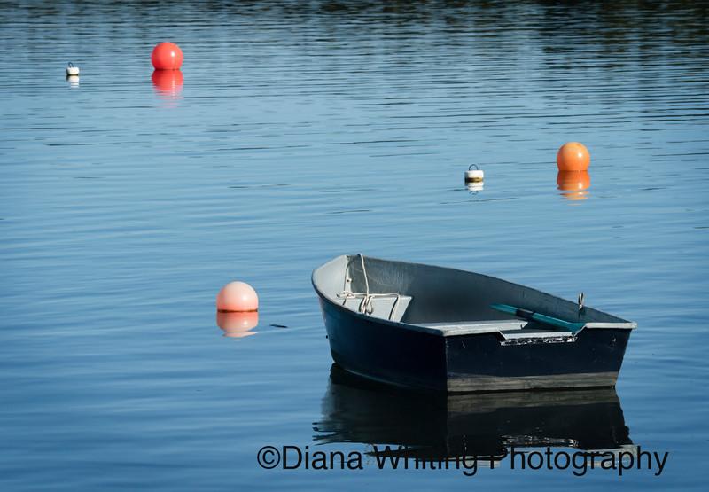 Fishing Boat Nova Scotia 2