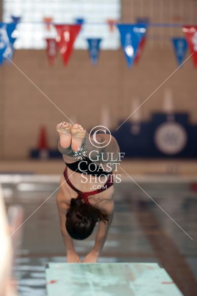 2011-02-09 Diving June Brown practice