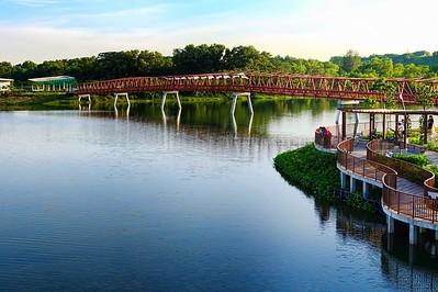 Lorong Halus Bridge, Punggol