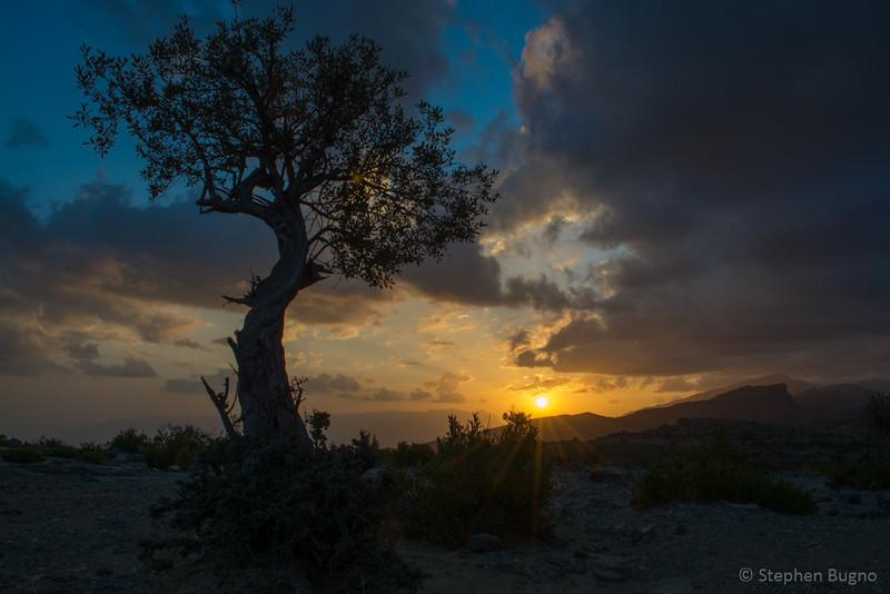 Jebel Akhdar-0758.jpg