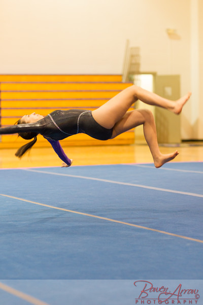 2015-03-02 Gymnastics vs Lakeland