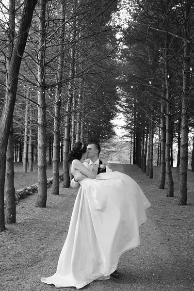 Dollarschell Wedding (1007).jpg