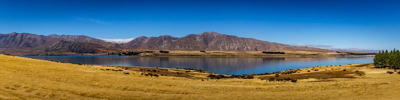 Blick vom «Peninsula Track» Richtung «Lake Tekapo»